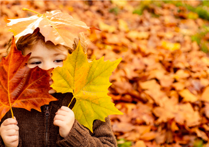 Autumn Leaves & Learning Opportunities 2